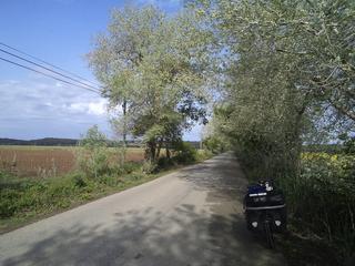 DSC03480.jpg