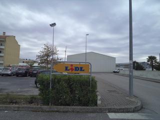 DSC03482.jpg